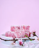 Homemade Australian style pink heart shape small lamington cakes with spring blossom - vertical with copyspace. Royalty Free Stock Image