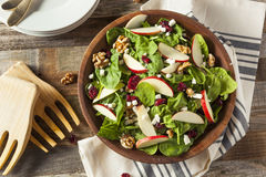 Homemade Autumn Apple Walnut Spinach Salad Royalty Free Stock Photography