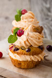 Homemade autumn cranberry pumpkin cupcakes with cream cheese ici Stock Photography