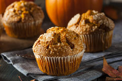 Homemade Autumn Pumpkin Muffin Royalty Free Stock Image