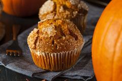 Homemade Autumn Pumpkin Muffin Royalty Free Stock Photography