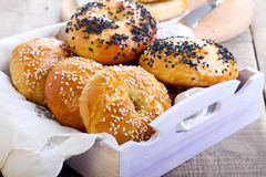 Homemade bagels Royalty Free Stock Photography