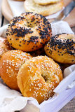 Homemade bagels Royalty Free Stock Image