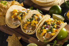 Homemade Baja Fish Tacos. With Mango Salsa and Chips Stock Photography
