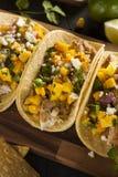Homemade Baja Fish Tacos Stock Photo