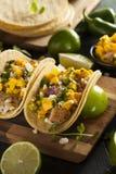 Homemade Baja Fish Tacos. With Mango Salsa and Chips Stock Image
