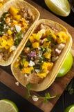 Homemade Baja Fish Tacos Royalty Free Stock Photo