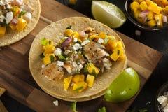 Homemade Baja Fish Tacos Royalty Free Stock Photos