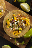 Homemade Baja Fish Tacos Stock Photography