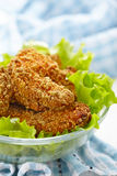 Homemade baked chicken nuggets Royalty Free Stock Photography