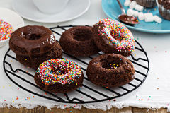 Homemade baked chocolate donuts Stock Photography