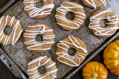 Homemade Baked Cinnamon Pumpkin Donuts Stock Photography