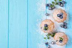Homemade baked muffin with blueberries, fresh berries, mint, powdered sugar on blue wooden background. Top view. Stock Photos