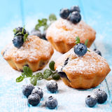 Homemade baked muffin with blueberries, fresh berries, mint, powdered sugar on blue wooden background. Top view. Stock Image