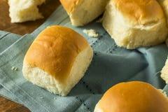 Homemade Baked Sweet Hawaiian Buns Stock Image
