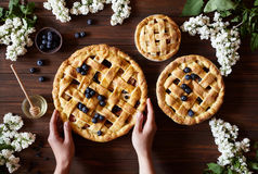 Homemade bakery pastry apple pies on dark wooden kitchen table with raisins, blueberry, honey and apples. Traditional. Homemade bakery pastry apple pie pies on Royalty Free Stock Photos