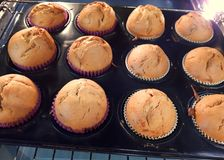 Homemade banana muffins in the oven. A plate of delicious homemade banana muffins in the oven ready to bake stock photography