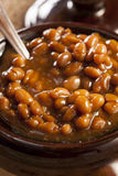 Homemade Barbecue Baked Beans Stock Images