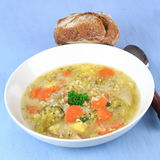 Homemade Barley Soup Royalty Free Stock Images