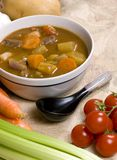 Homemade Beef Stew 005. Homemade beef stew with fresh vegetables herbs and spices Stock Photos