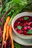 Homemade beetroot soup with vegetables and dumplings stock photography