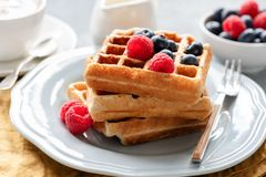 Homemade belgian waffles with berries Royalty Free Stock Images