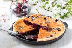Homemade berry custard tart Royalty Free Stock Photography
