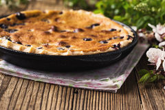 Homemade berry custard tart Stock Image