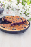 Homemade berry custard tart Stock Images