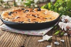 Homemade berry custard tart Royalty Free Stock Images