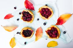 Homemade berry fruit pastry isolated on white Royalty Free Stock Photography