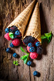 Homemade berry fruits ice cream on wooden bark as concept. On old bark royalty free stock photo