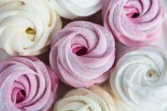 Homemade berry marshmallow Royalty Free Stock Photos