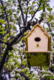 Homemade Bird House. Wooden Hand Made Bird House hanging from branch of a tree in backyard Stock Photo