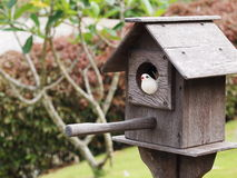 Homemade bird house Stock Image