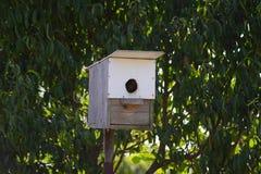 Homemade birdhouse in the garden Stock Images