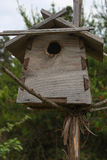 Homemade birdhouse. Homemade wooden birdhouse in a green forest Stock Images