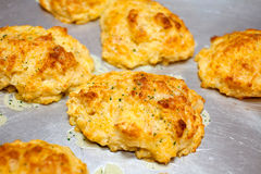 Homemade biscuits. Hot and fresh homemade biscuits on metal plate Royalty Free Stock Photo