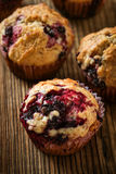 Homemade black berry muffins Stock Image