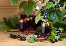 Homemade black currant liqueur and fresh berries . Homemade black currant liqueur and fresh berries on a branch , wooden background stock photography