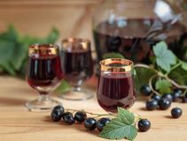 Homemade black currant liqueur and fresh berries . stock photos