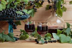 Homemade black currant liqueur and fresh berries. On a branch , wooden background stock image