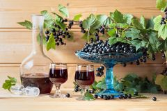 Homemade black currant liqueur and fresh berries. On a branch , wooden background stock photos