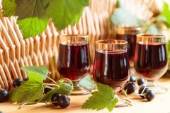 Homemade black currant liqueur and fresh berries. Homemade black currant liqueur and fresh berries, wooden background royalty free stock photo