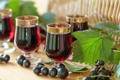 Homemade black currant liqueur and fresh berries. Homemade black currant liqueur and fresh berries, wooden background stock photo