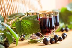 Homemade black currant liqueur and fresh berries. Homemade black currant liqueur and fresh berries, wooden background royalty free stock photography