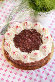 Homemade Black Forest cake Royalty Free Stock Photo