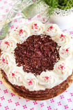 Homemade Black Forest cake Stock Images