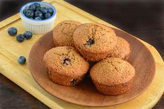 Homemade blueberry bran muffins. With fresh blueberries on rustic wooden background in horizontal format and shot in natural light Stock Images
