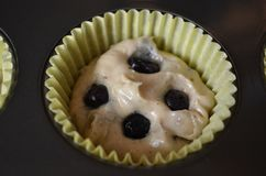 Homemade Blueberry Muffin Batter. In metal tin royalty free stock photo